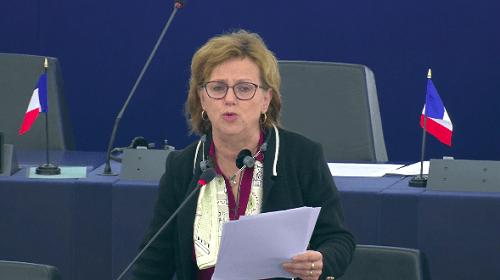 Déstabilisation du Cameroun: La députée européenne Dominique Bilde s'oppose à l'ingérence étrangère