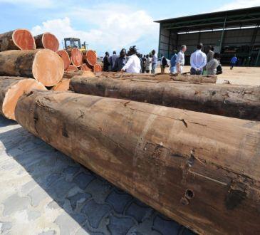 Gabon: l'entrepreneur chinois mis en cause dans le «Kévazingogate» proclame son innocence