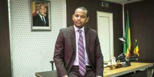 NOUVEAU GOUVERNEMENT MALIEN. : Boubou Cissé réussira-t-il là où a échoué Boubeye Maïga?