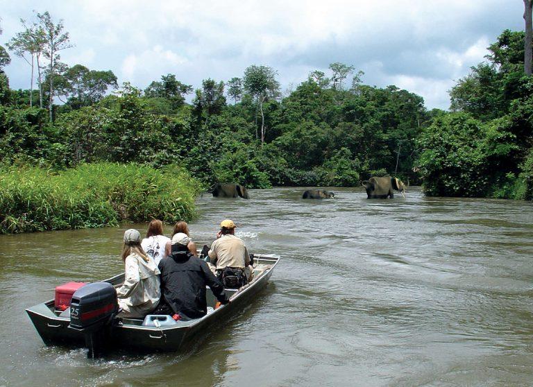 Rencontres nationales du tourisme : Le secteur cherche sa voie