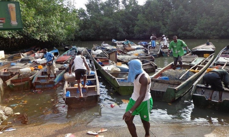 Gabon : L'interdiction de pêcher et de vendre des carpes est levée
