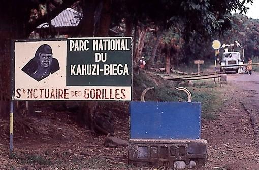 RDC : Un ranger tué dans le parc de Kahuzi-Biega
