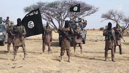 Cameroun – Extrême-nord: Boko Haram hisse son drapeau à Kamouna