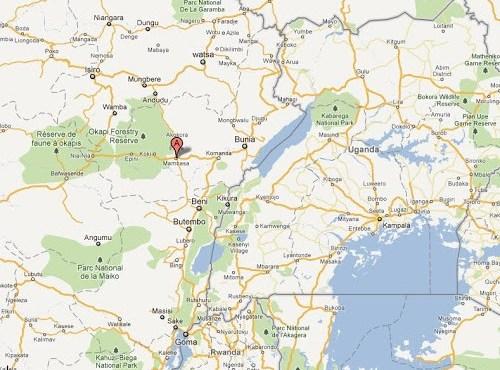 Ituri : les FARDC interpellent 18 présumés auteurs d'attaques contre les équipes de riposte contre Ebola