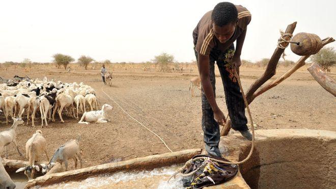 Le PAM met en garde contre une «crise humanitaire dramatique» au Sahel