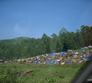 Ituri : découverte de 9 corps sans vie à Mutanga au bord du Lac Albert