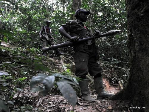 Sud-Kivu : les FARDC poursuivent leur offensive contre les rebelles rwandais du CNRD