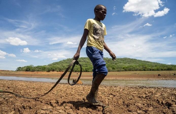 La moitié des Zimbabwéens menacés de famine