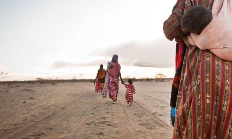 5e206784f20d5a253a9cc5cf - La famine menace 45 millions de personnes en Afrique australe