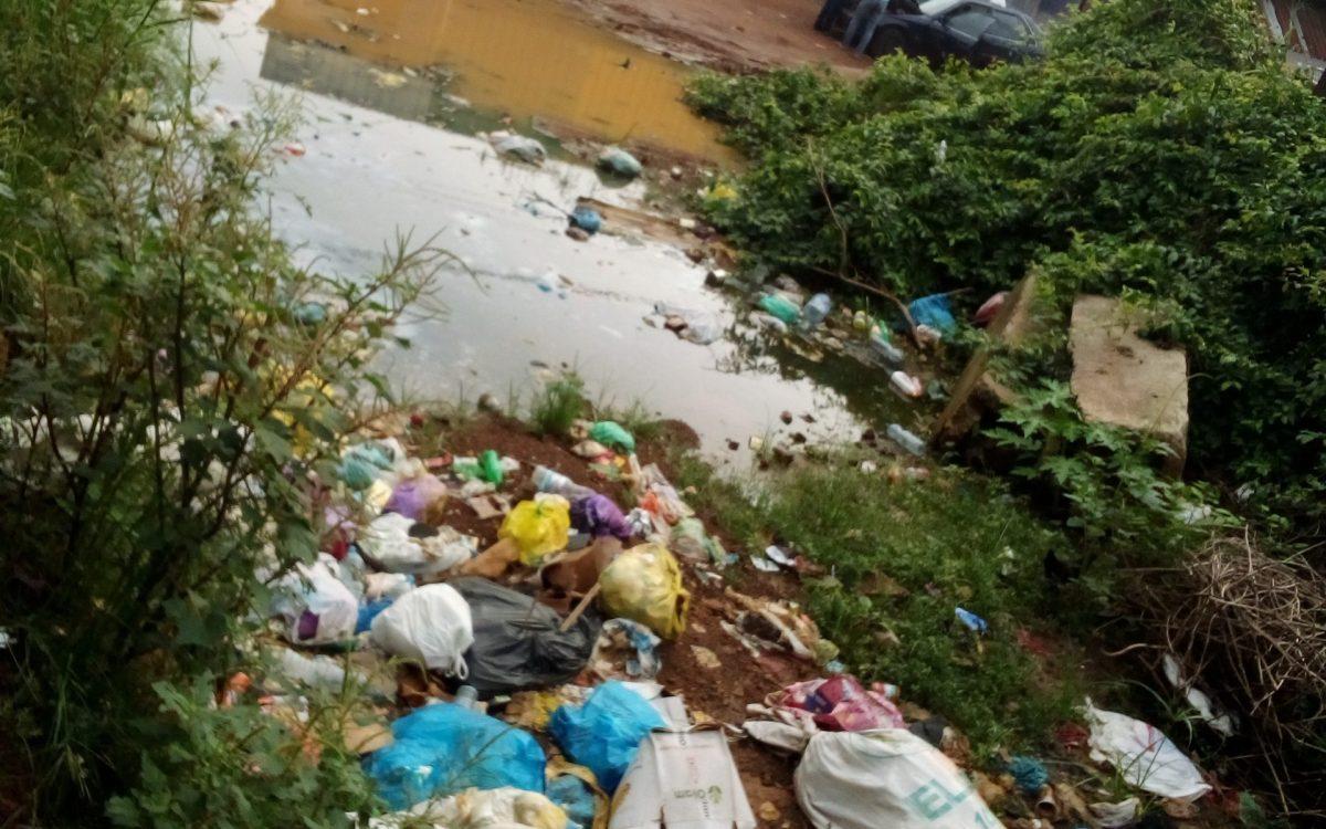 IMG 20200312 083159 2 scaled - Société/Insalubrité : des flaques d'eaux jonchent les poubelles de Libreville.