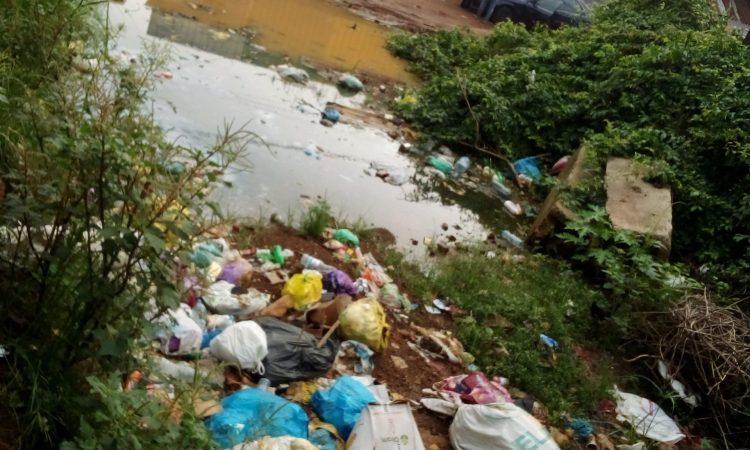 Société/Insalubrité : des flaques d'eaux jonchent les poubelles de Libreville.
