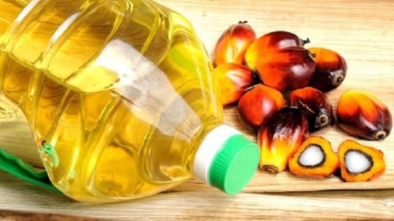 Olam-Palm Gabon autorisé pour la production de biocarburant