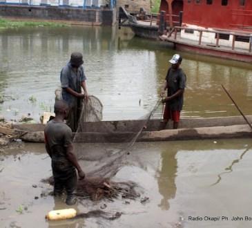Sud-Kivu : un groupe des pécheurs dénonce le détournement de l'argent destiné pour l'achat de 150 cages flottantes sur le Lac Kivu