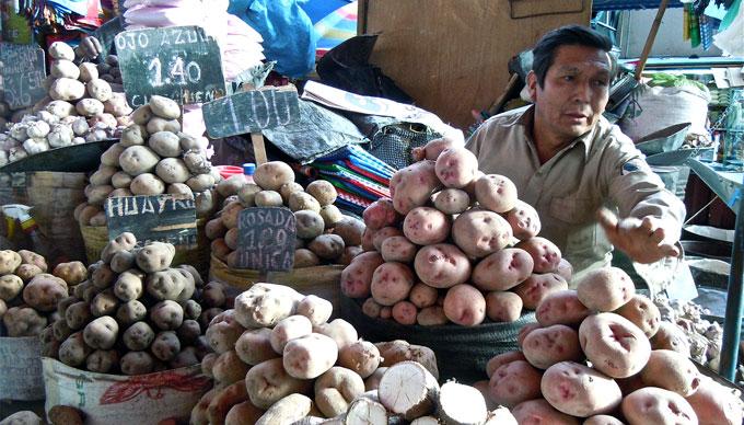 arequipa_patates