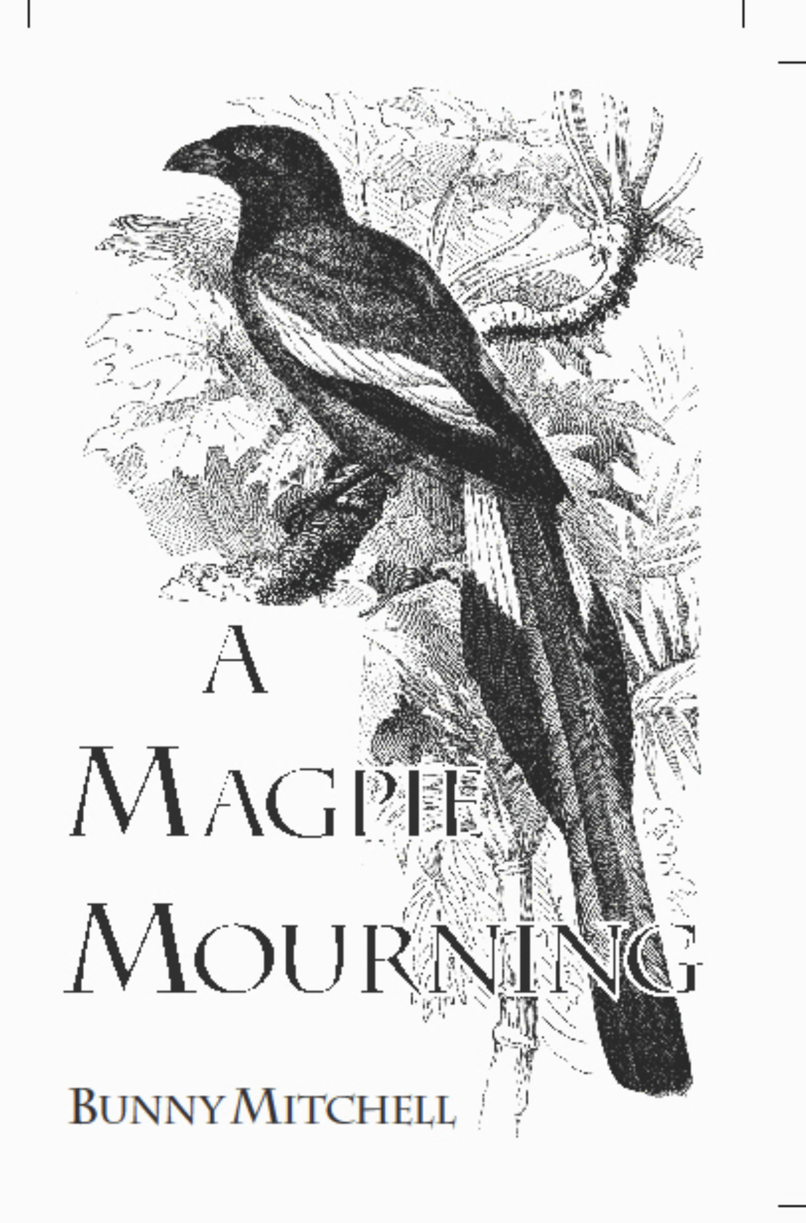 Smashwords – A Magpie Mourning