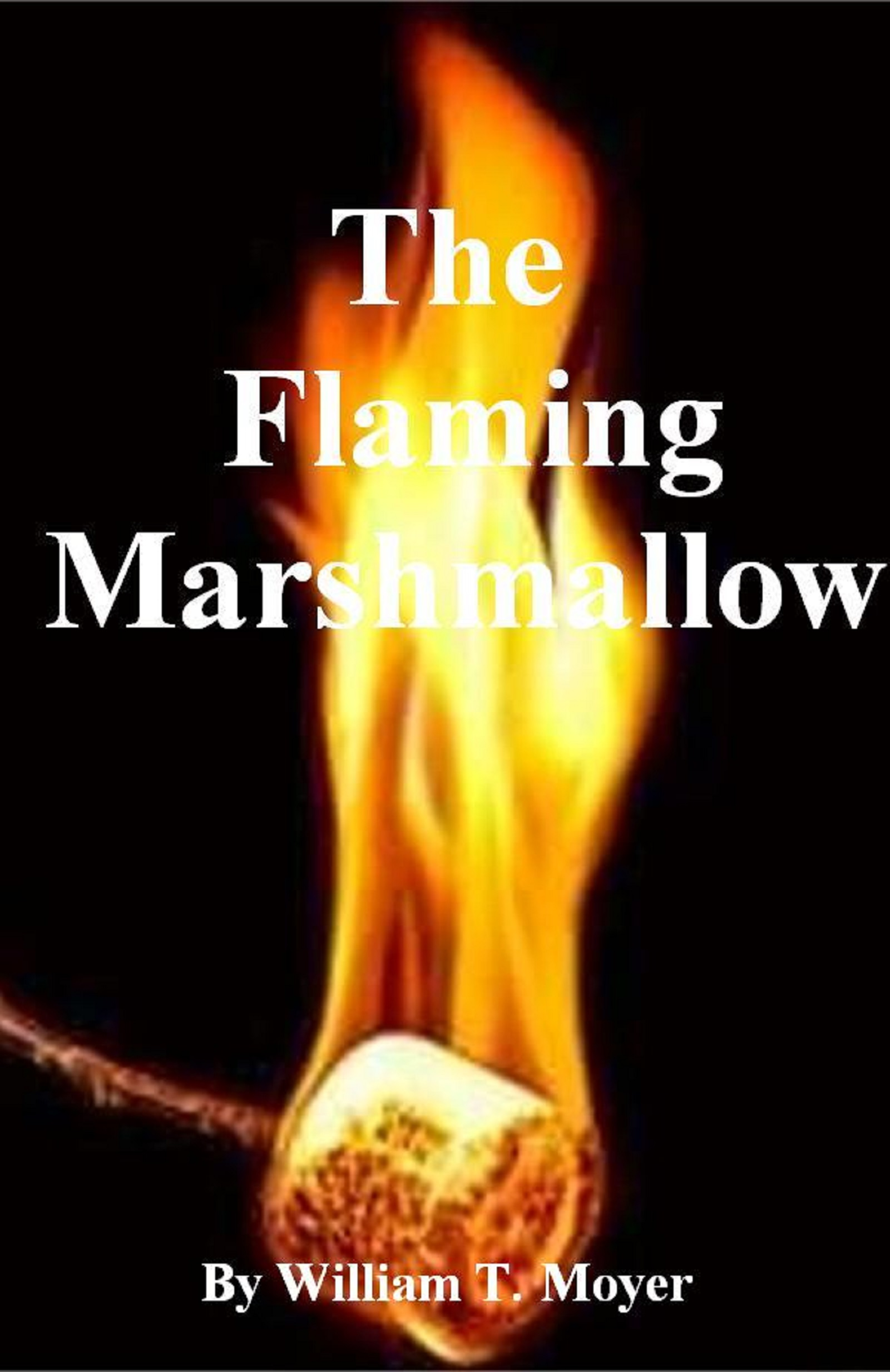 the flaming marshmallow an