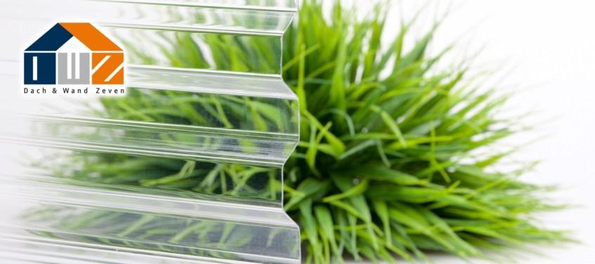 Polycarbonat Lichtplatten Glasklar