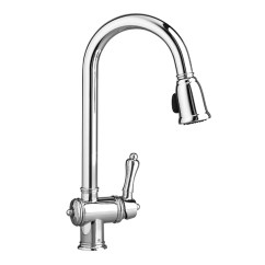Pull Out Spray Kitchen Faucet Sinks For Down Faucets Victorian From Dxv
