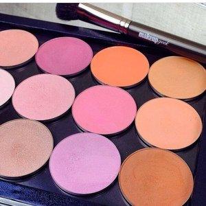 Do Makeup Geek Blushes Fit In Mac Pro Palette Saubhaya