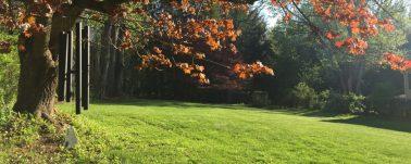 cropped-farm-backyard.jpeg