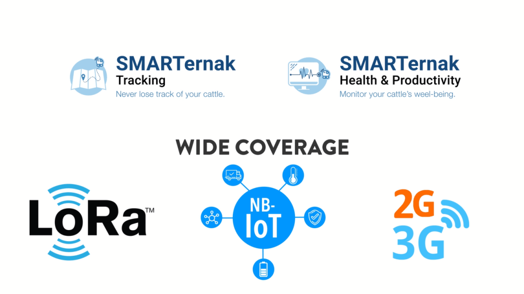 SMARTernak types and coverage features.