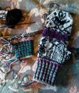 torirot mystery mittens