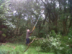 The Pole Saw in action
