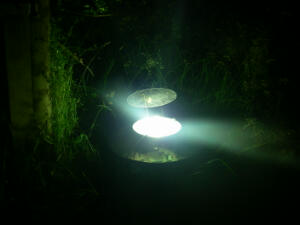 The moth trap. Moths attracted to the light get trapped in the cone underneath.