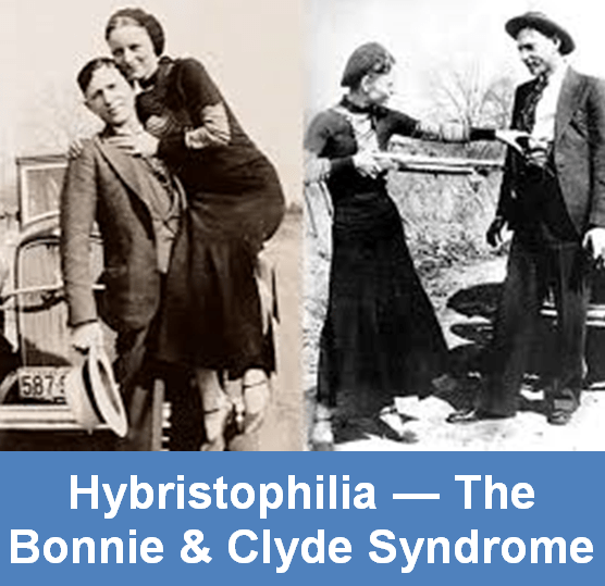 The story of bonnie and clyde poem analysis