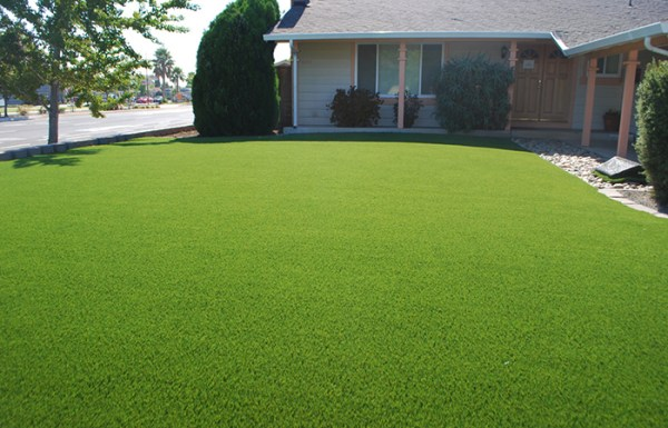grass free lawn alternatives