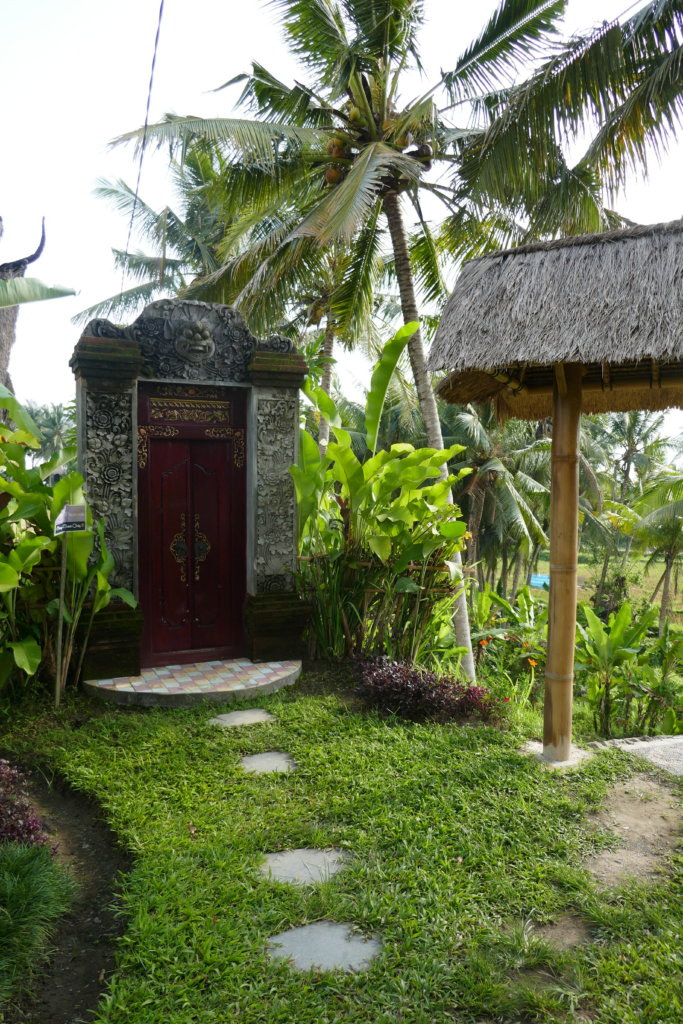 A palm treed behind a red wood door to the ecolodge