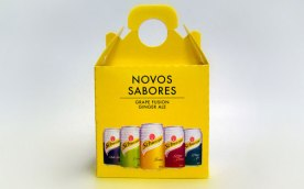 16-schweppes-new-flavors-box-packaging