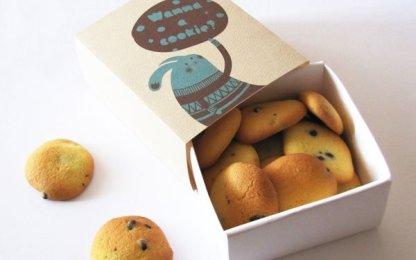28-bunny-cookies-box-jar-design
