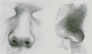 nose draw realistic noses pencil drawing mouth tutorial drawings portraits easy sketch eye eyes beginners techniques different tutorials tips faces