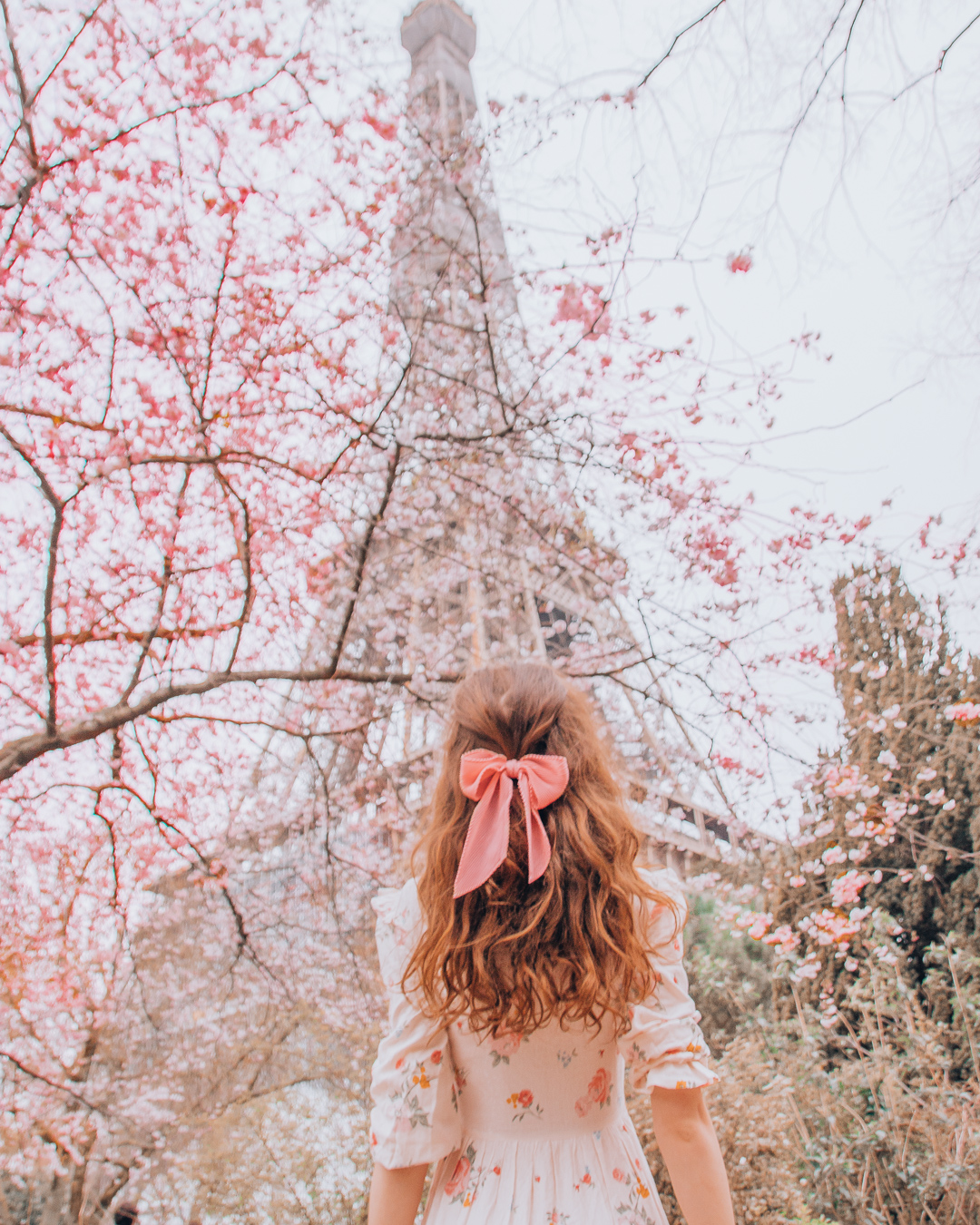Girl in front of a pink tree and the Eiffel Tower