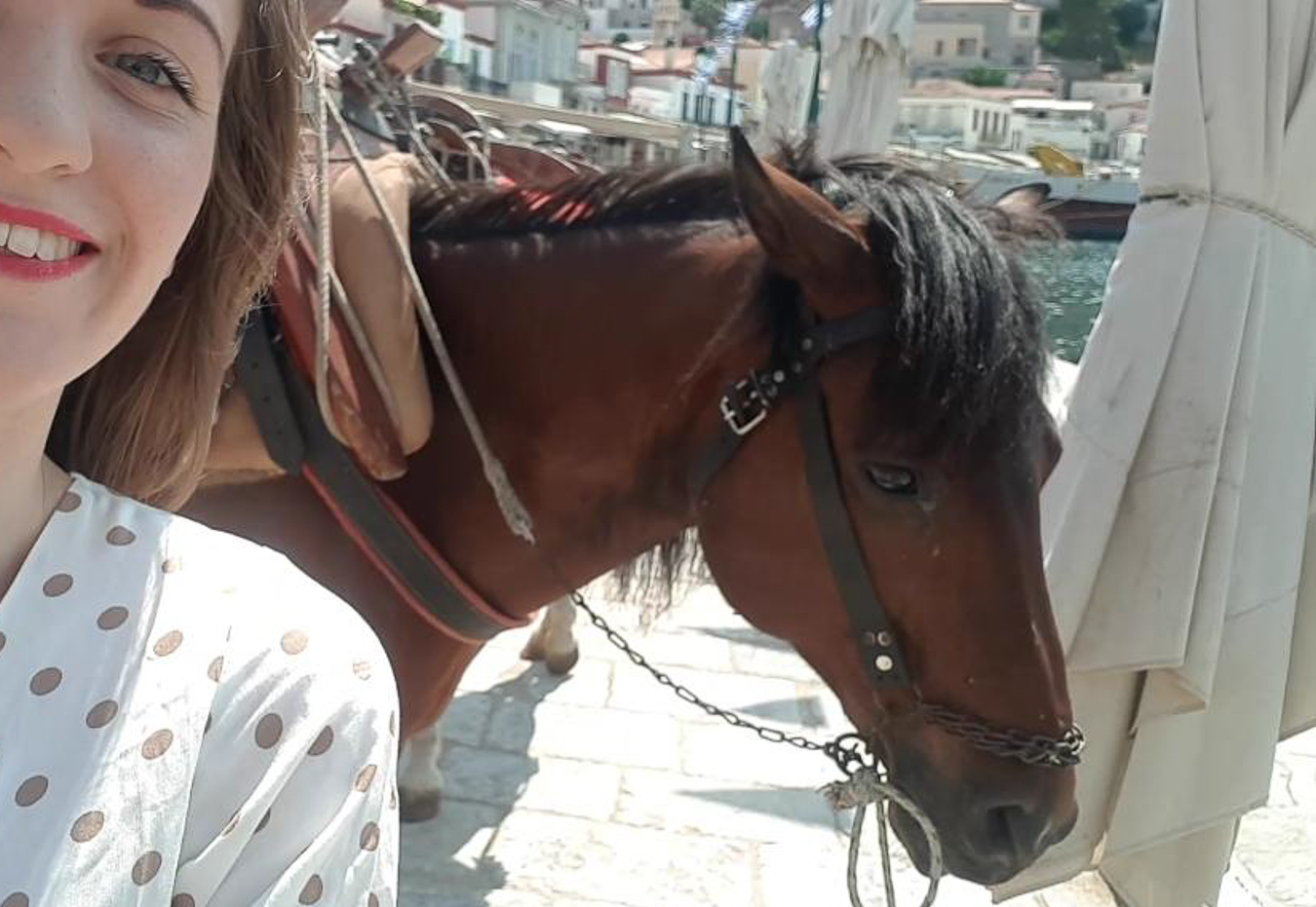 Girl with mule on Hydra