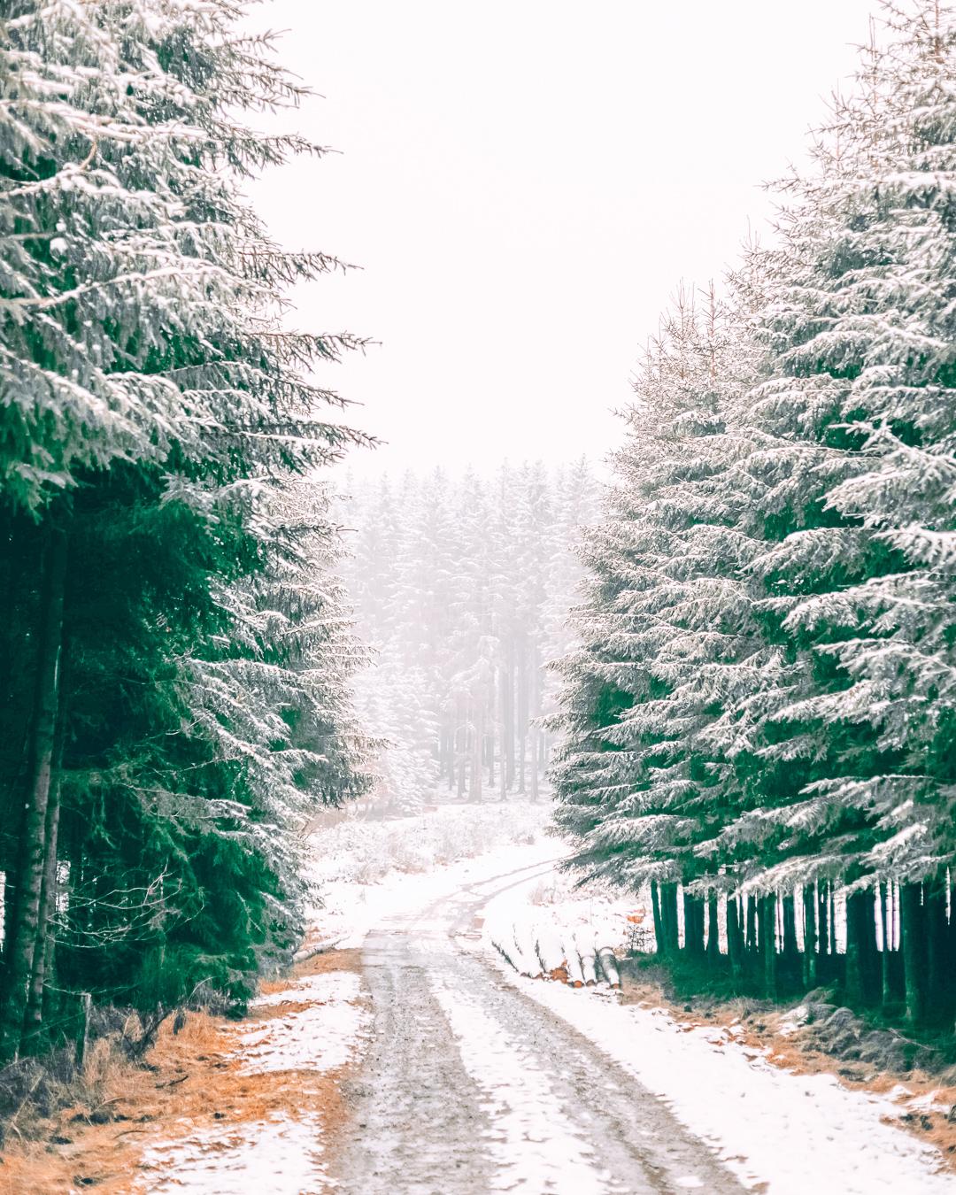 Snow in Belgium in winter