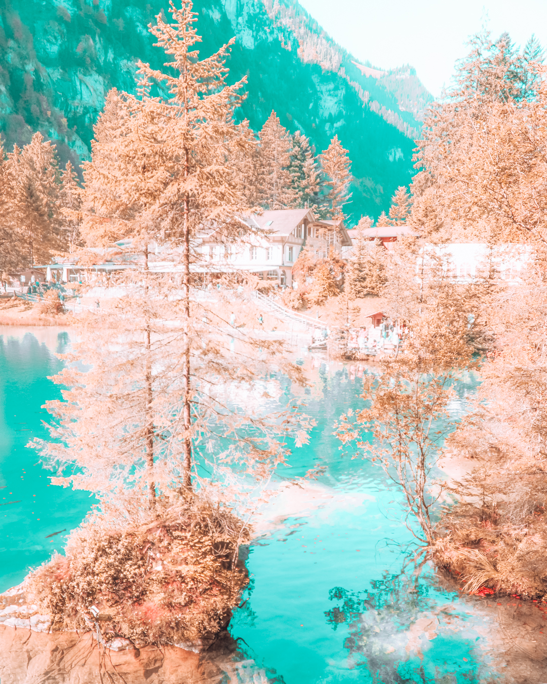 Blue water and trees at Blausee