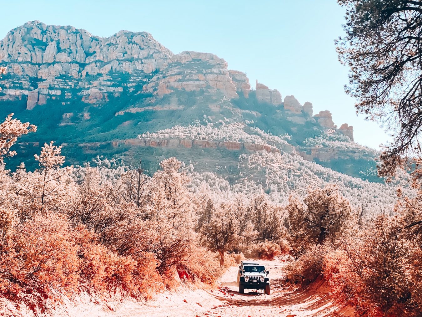 Car and road in Sedona
