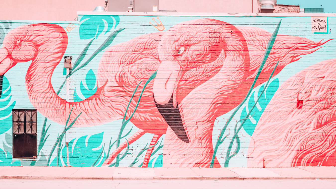 Instagrammable flamingo wall in Chicago