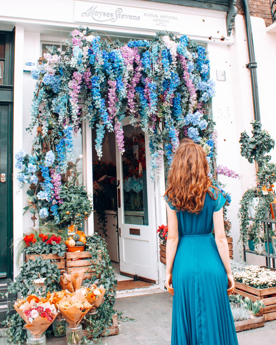 Blue flowers at Moyses Stevens