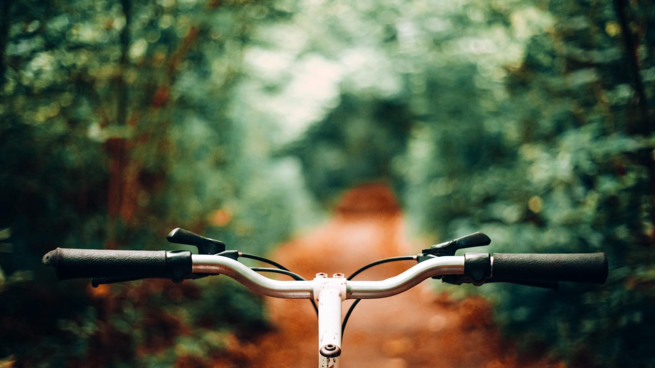 Bike in Overton Park