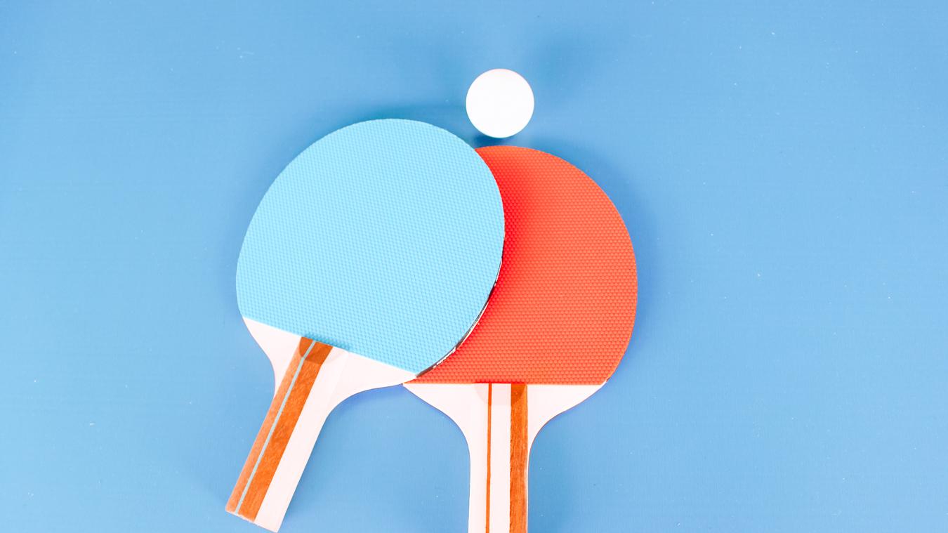 Pin pong paddles