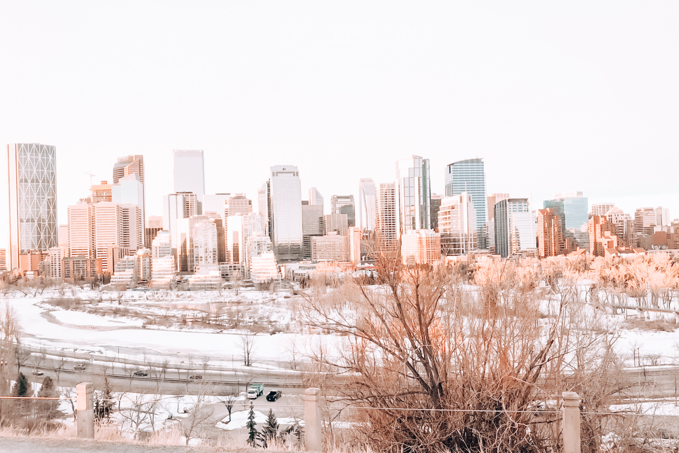 A view of Calgary