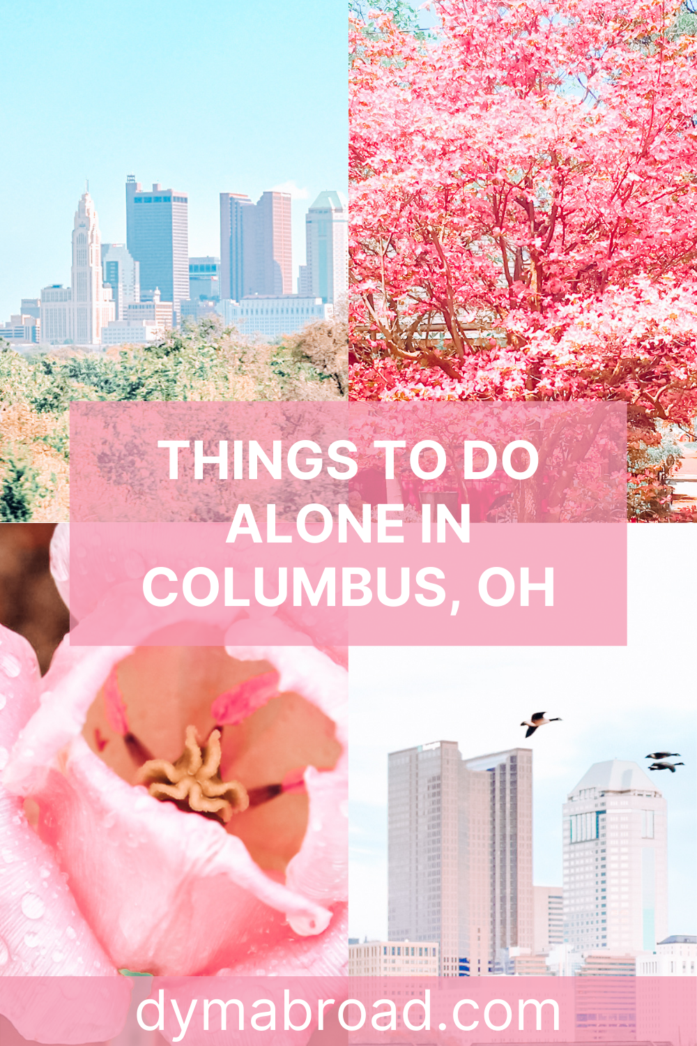 Things to do alone in Columbus Pinterest image