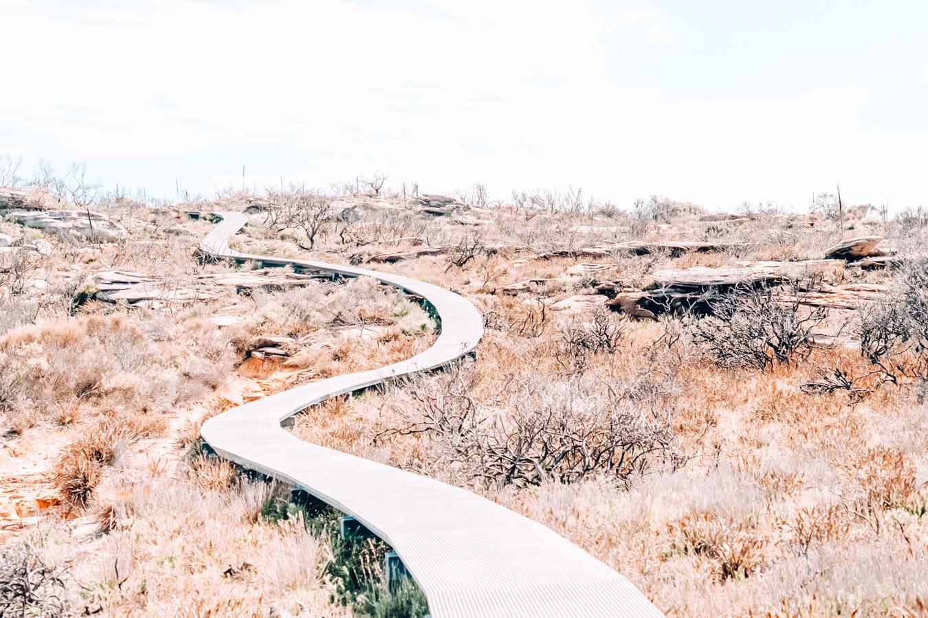 Royal National Park