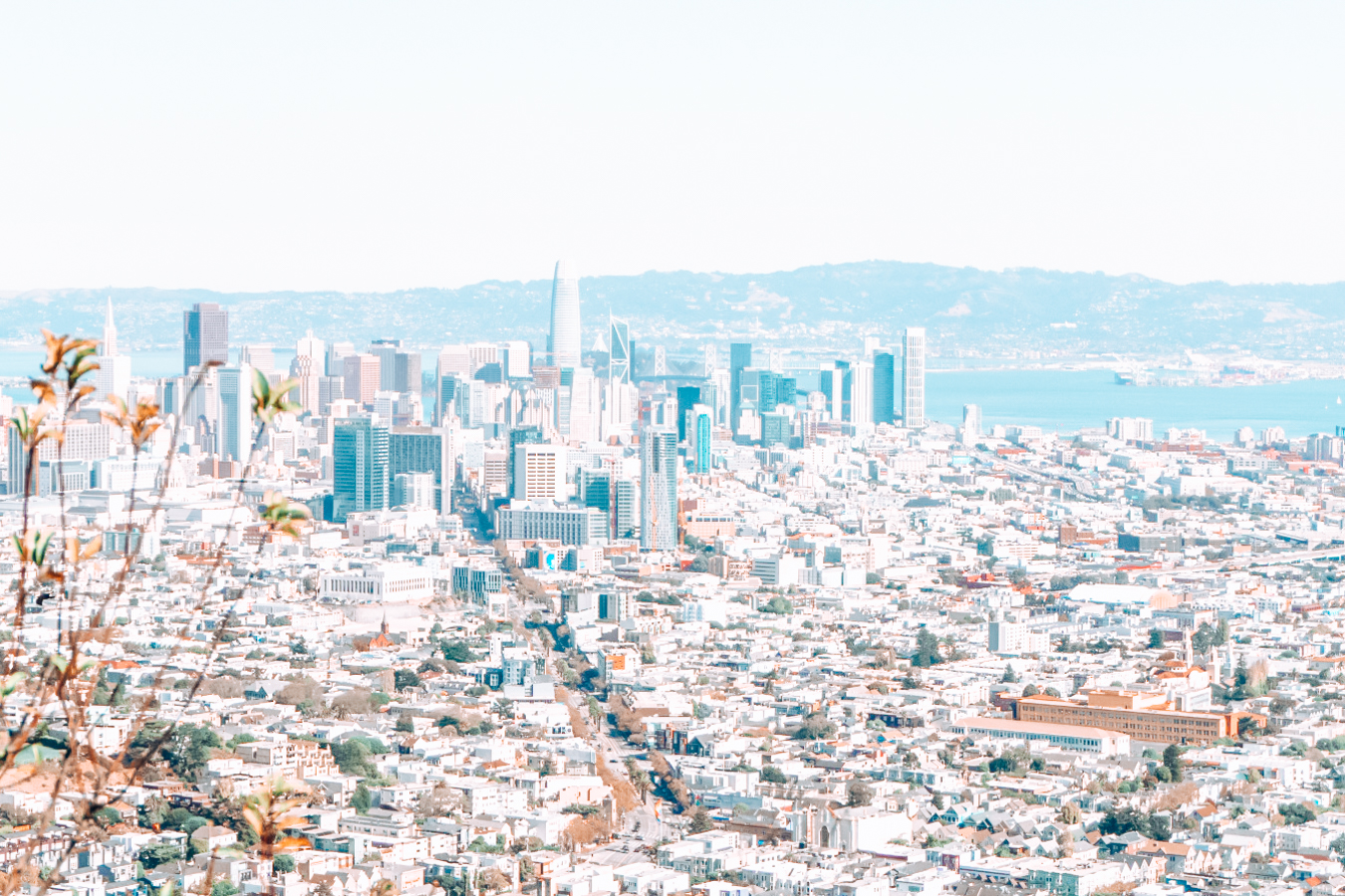 Instagrammable view from Twin Peaks in San Francisco