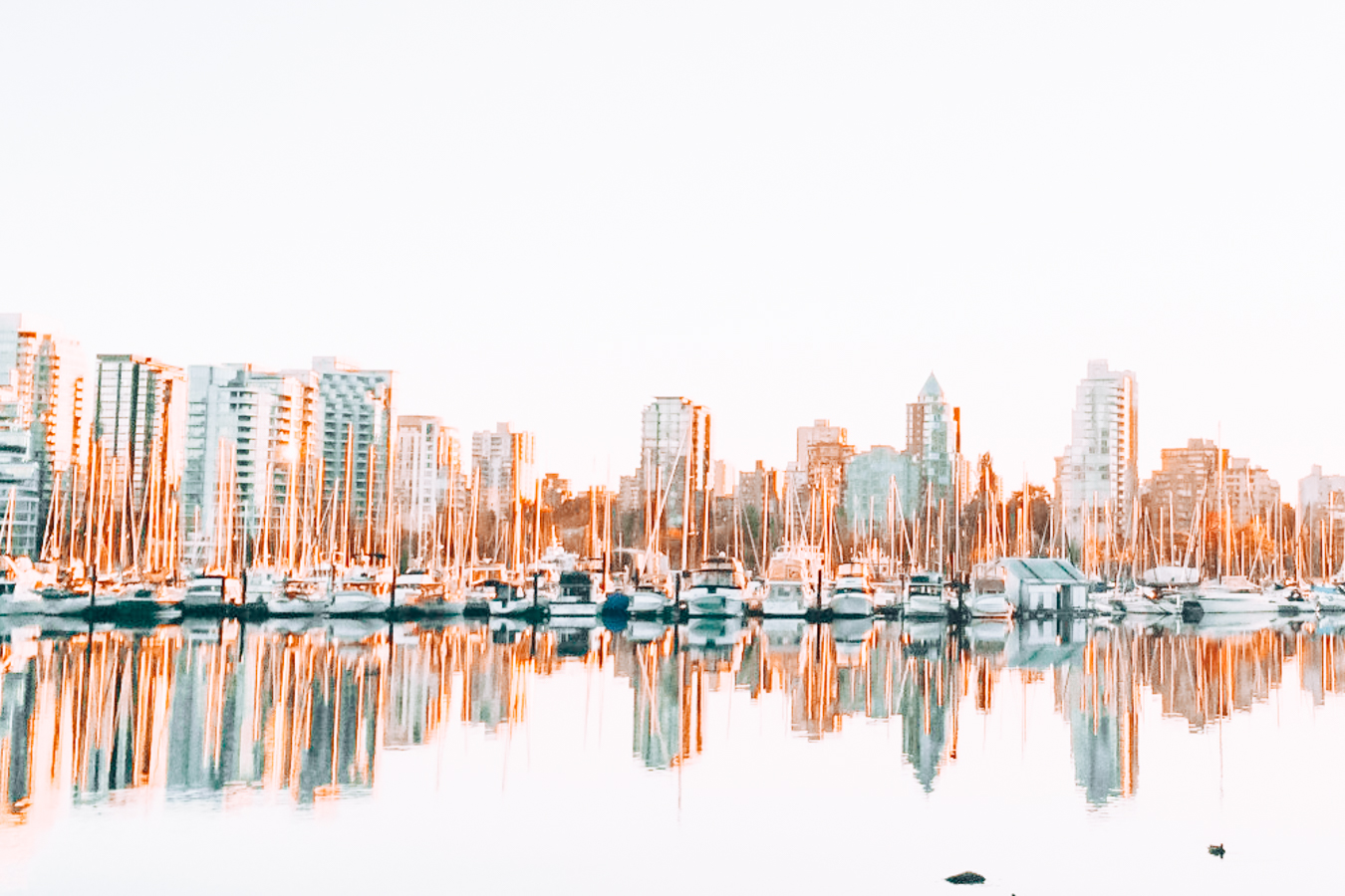 A view of boats and buildings in Vancouver