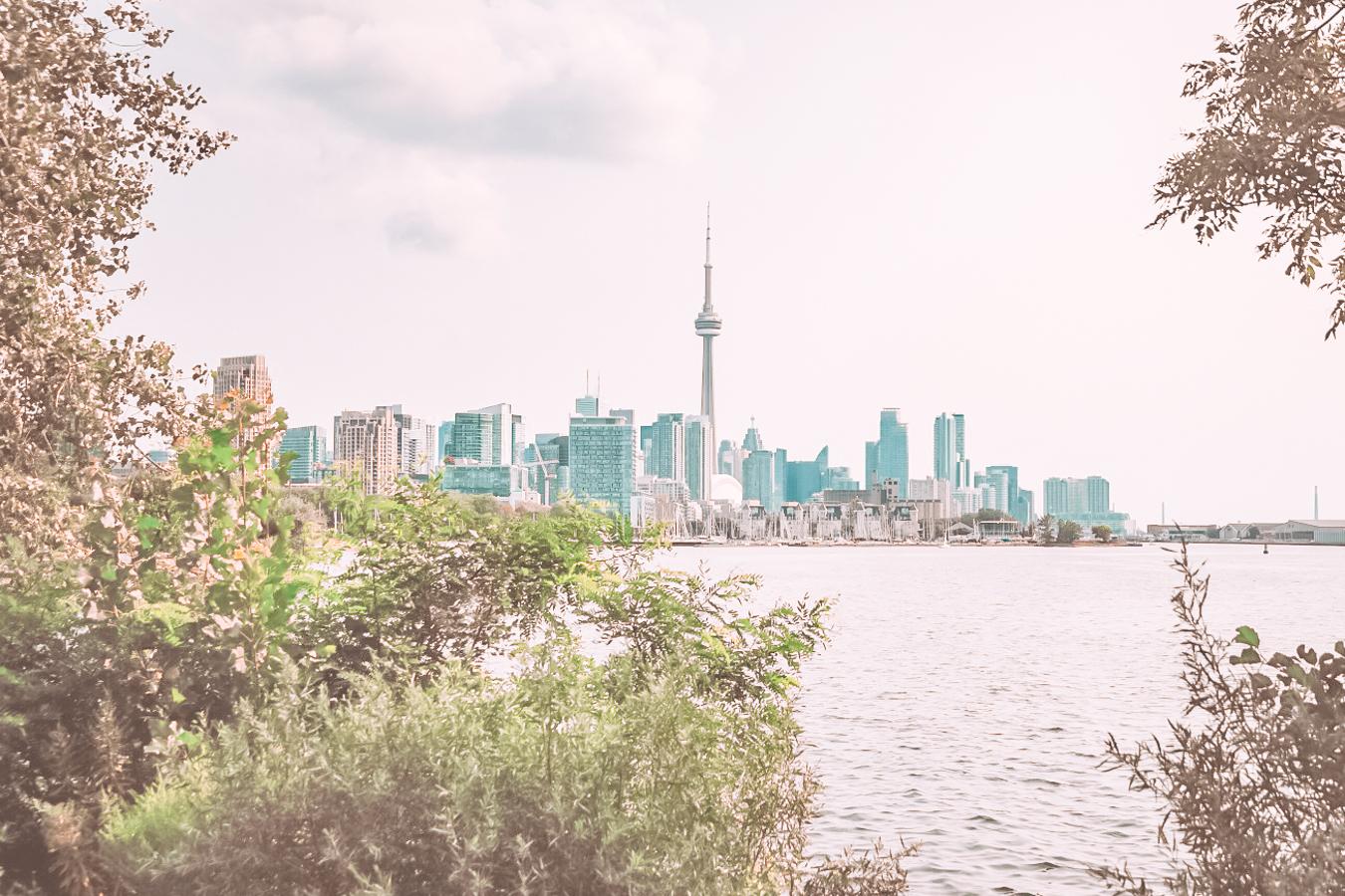 Toronto and trees