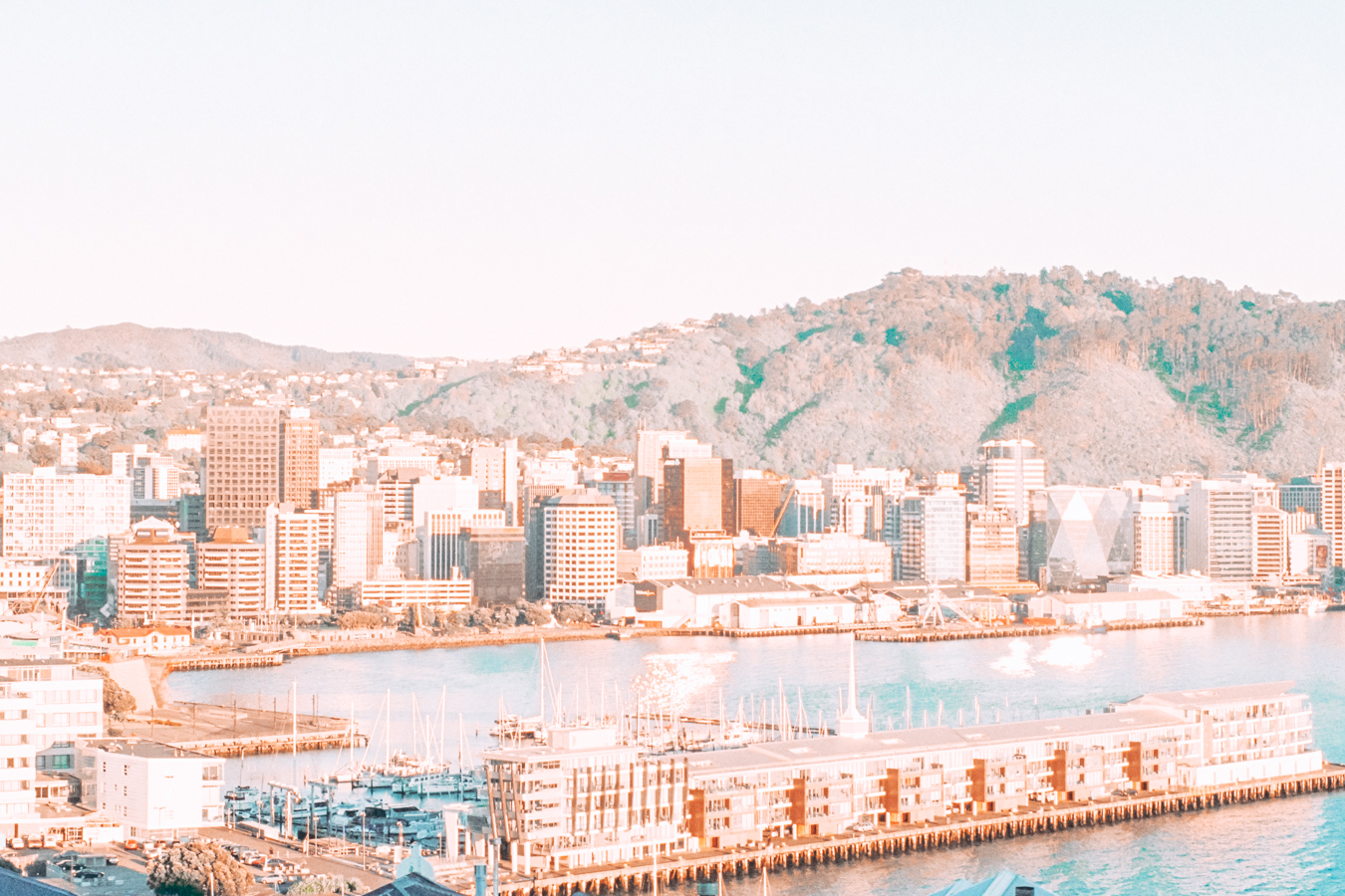 A view of buildings and water in Wellington